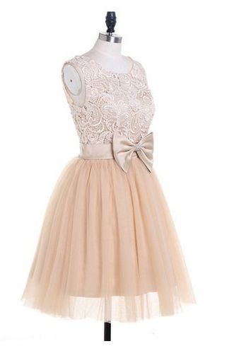 Charming Evening Dress,Short Prom Dress,Lace Homecoming Dress,Prom Gown